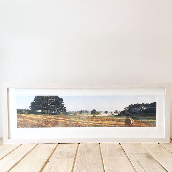 Panoramic Photographic Print
